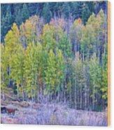 Autumn Grazing Horses Bonanza Wood Print by James BO  Insogna