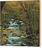Autumn Greenbriar Cascade Wood Print