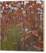 Autumn Harmony 3 Wood Print