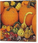Autumn Harvest 5 Wood Print