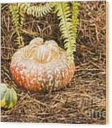 Autumn Harvest Wood Print
