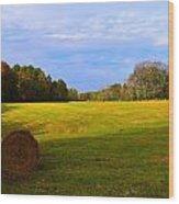 Autumn Hay 3 Wood Print