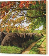 Autumn Hay Bales Blue Ridge Mountains II Wood Print
