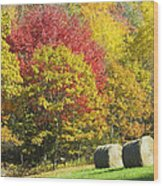 Autumn Hay Being Harvested In Maine Wood Print