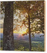 Autumn Highlights Wood Print by Debra and Dave Vanderlaan