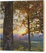 Autumn Highlights Wood Print by Debra and Dave Vanderlaan