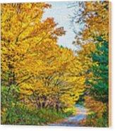 Autumn Hike - Paint Wood Print