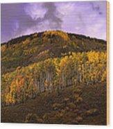 Autumn Hillside Wood Print