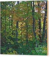 Autumn Hilltop  Wood Print