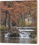 Autumn Idyll Wood Print