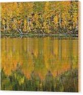 Autumn Impressions 2 Wood Print