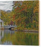 Autumn In Atlanta Wood Print