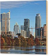 Autumn In Austin Wood Print