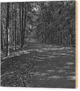 Autumn In Black And White Wood Print