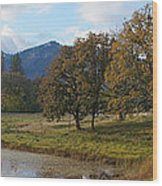 Autumn In Evans Valley Wood Print