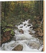 Franconia Notch In Autumn  Wood Print