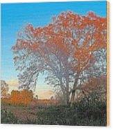 Autumn In Georgia Wood Print