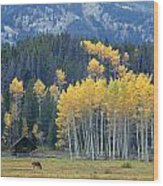 1m9359-autumn In Jackson Hole Ranch Country Wood Print