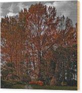 Autumn In Mt Vernon Wood Print