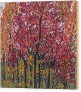 Autumn In Nashville Wood Print