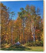 Autumn In North River New York Wood Print