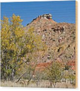 Autumn In Palo Duro Canyon 110213.119 Wood Print