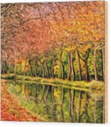 Autumn In Provence Wood Print