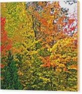 Autumn In Southwest Michigan Wood Print