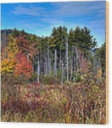 Autumn In The Adirondacks Wood Print by David Patterson