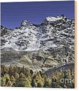 Autumn In The Alps 1 Wood Print