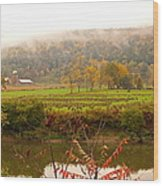 Autumn In The Butternut Valley-six Wood Print