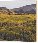 Autumn In The Colorado Mountains Wood Print