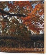 Autumn In The Country Wood Print by Inspired Nature Photography Fine Art Photography