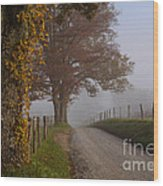 Autumn In The Cove Wood Print