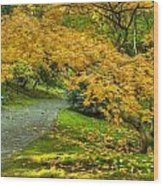 Autumn In The Garden Wood Print
