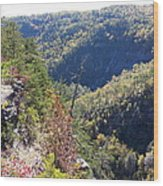 Autumn In The Gorge Wood Print