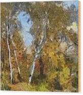 Autumn In The Marshes Wood Print
