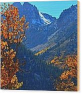 Autumn In The Sierras Wood Print