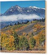 Autumn In The Tetons Wood Print