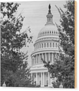 Autumn In The Us Capitol Bw Wood Print