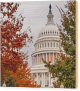 Autumn In The Us Capitol Wood Print