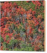 Autumn In The Wasatch Range Wood Print