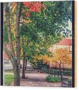 Autumn In Vancouver Washington Wood Print