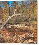 Autumn In Virginia Wood Print