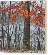 Autumn In Winter Wood Print