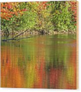 Autumn Iridescence Wood Print