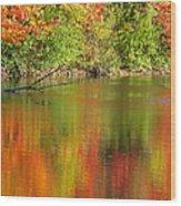 Autumn Iridescence Wood Print