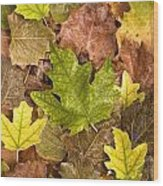 autumn is coming 5 - A carpet of autumn color leaves  Wood Print