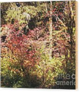 Autumn Is In The Air Wood Print