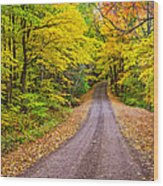 Autumn Journey Wood Print